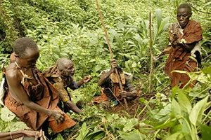 Batwa Trail in Bwindi